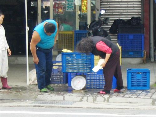 measuring bamboo shoots for sale