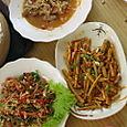Shrimpbamboo